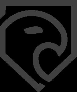 Logo von Webdesign & SEO Agentur FalconFlat